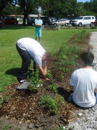Easter Seals Hedgerows